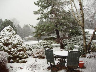 first-snow1.jpg